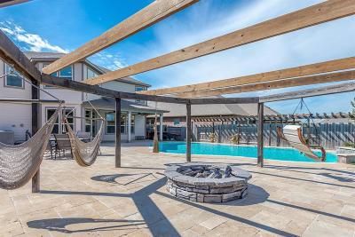 League City Single Family Home For Sale: 1606 Cintola Lane