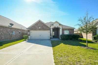 Harris County Single Family Home For Sale: 20543 Iron Seat Drive