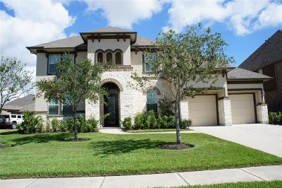 Pearland Single Family Home For Sale: 3407 Leafstone Lane