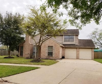 Single Family Home For Sale: 2303 Sand Plum Drive