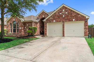 Tomball Single Family Home For Sale: 19406 Cloud Peak Drive