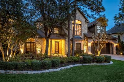 The Woodlands Single Family Home For Sale: 94 N Garnet Bend