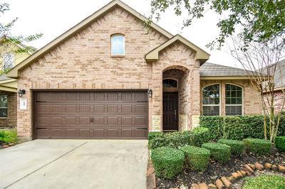 Webster Single Family Home For Sale: 605 Pedernales Street