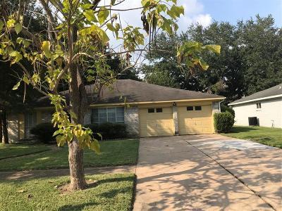 Houston Single Family Home For Sale: 11306 Elmcroft Drive