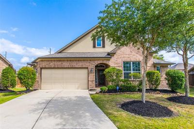 Fort Bend County Single Family Home For Sale: 11618 Carisio Court