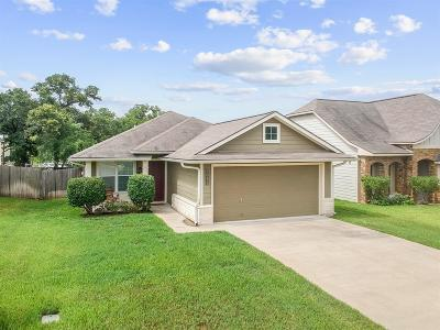 Bryan Single Family Home For Sale: 2011 Mountain Wind Loop