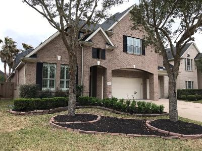 Manvel Single Family Home For Sale: 3702 Skyline Drive