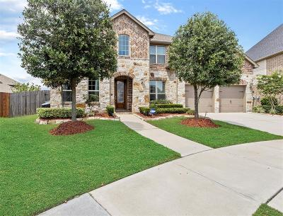 Sugar Land Single Family Home For Sale: 4207 Moss Cove Court