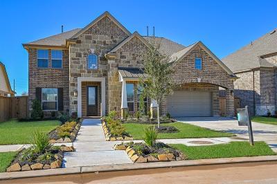 Missouri City Single Family Home For Sale: 2307 Ironwood Pass Drive