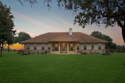 Austin County Farm & Ranch For Sale: 372 Chew Road