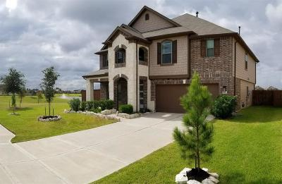 Katy Single Family Home For Sale: 4407 S Vineyard Meadow Lane