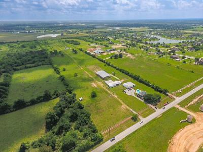 Tomball Farm & Ranch For Sale: 20510 Mueschke Road