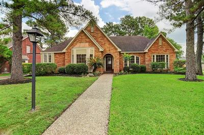 Houston Single Family Home For Sale: 4202 Amber Lake Drive