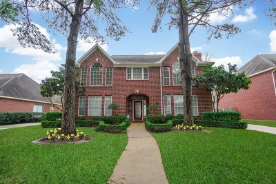 Sugar Land Single Family Home For Sale: 16910 Ascot Meadow Drive