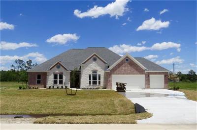 Baytown Single Family Home For Sale: 4933 Dutton Lake Drive