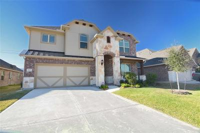 Pearland Single Family Home For Sale: 2822 Park Villa Drive