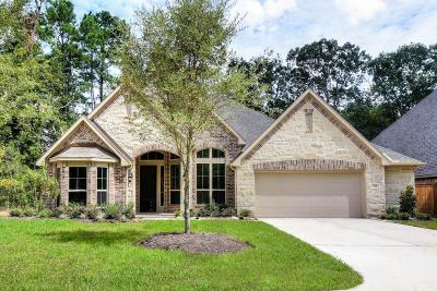 Conroe Single Family Home For Sale: 116 Verdancia Park Court