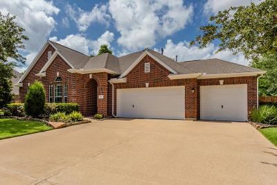 Pearland Single Family Home For Sale: 2903 Knob Hill Street