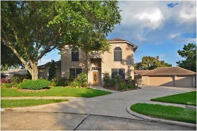 Friendswood Single Family Home For Sale: 703 Aladdin Court