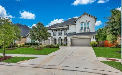 Sienna Plantation Single Family Home For Sale: 91 Marino Drive