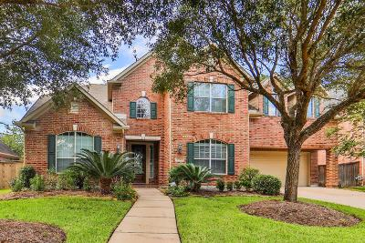 Spring Single Family Home For Sale: 9730 Blue Cruls Way
