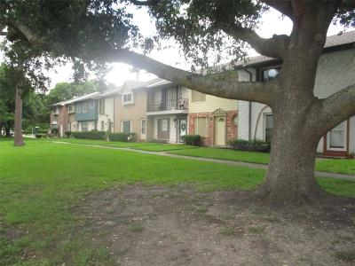 Friendswood Condo/Townhouse For Sale: 3814 Laura Leigh Drive