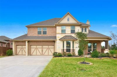 Conroe Single Family Home For Sale: 461 Holly Forest Drive