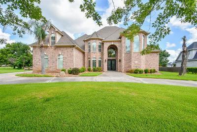 Missouri City Single Family Home For Sale: 4818 Raintree Drive