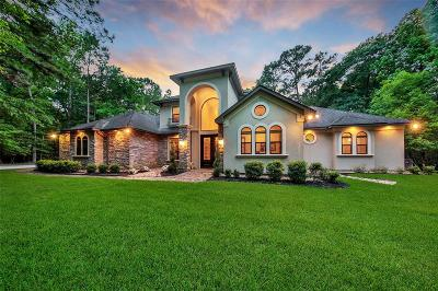 Conroe Single Family Home For Sale: 19 Stony Creek Drive