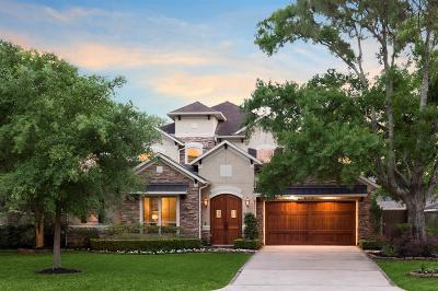 Houston Single Family Home For Sale: 8617 Lupton Lane