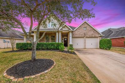 Pearland Single Family Home For Sale: 11415 Summit Bay Drive