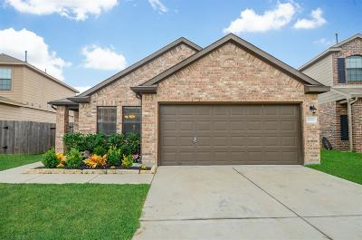 Katy Single Family Home For Sale: 19730 Chandon Mist Drive