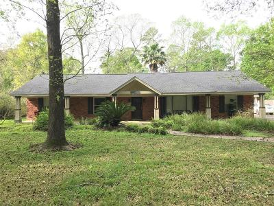 Houston Single Family Home For Sale: 16919 Waycreek Road