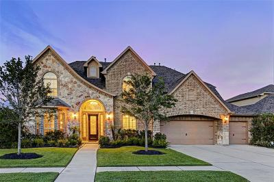 Manvel Single Family Home For Sale: 4317 Buffalo Berry Lane