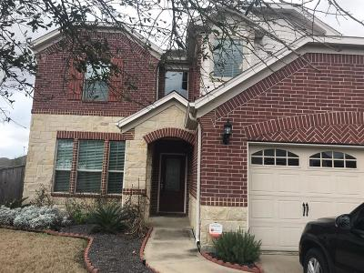 Katy Single Family Home For Sale: 10003 Forrester Trail