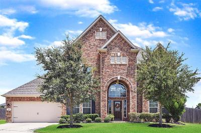 Katy Single Family Home For Sale: 3305 Remington Rise Lane