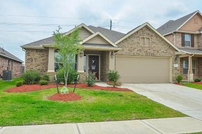 Katy Single Family Home For Sale: 3807 Goldleaf Trail Drive