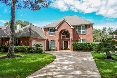 Sugar Land Single Family Home For Sale: 3311 Vista Lake Drive