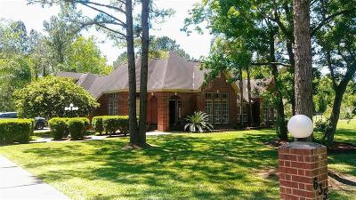 Dickinson Single Family Home For Sale: 635 Avenue L