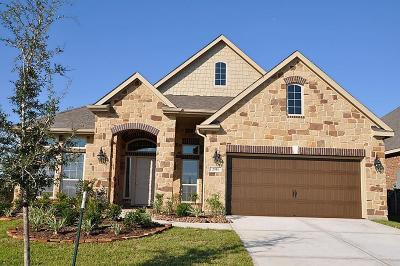 Friendswood Single Family Home For Sale: 2353 Opal Springs Lane