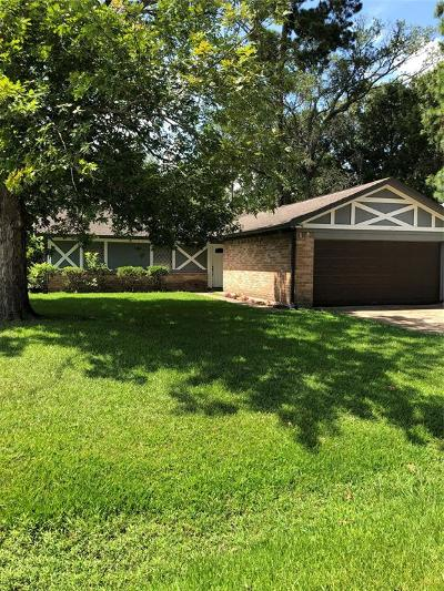 Houston Single Family Home For Sale: 318 Blue Tail Drive