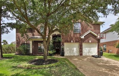 Single Family Home For Sale: 9907 Van Brook Lane