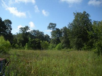 Conroe Residential Lots & Land For Sale: 1108 Miracle Drive