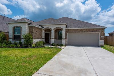 Texas City Single Family Home For Sale: 2810 Bernadino Drive