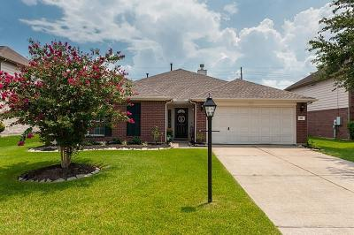 League City Single Family Home For Sale: 406 Cedar Branch Drive