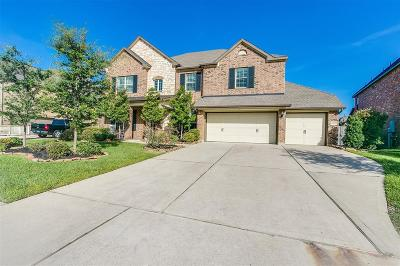 Friendswood Single Family Home For Sale: 1020 Point Isabel Lane