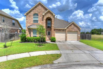 Spring Single Family Home For Sale: 30706 Sage Trace Court