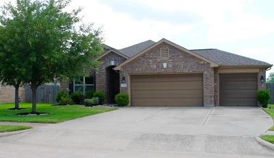 Pearland Single Family Home For Sale: 1516 Brook Hollow