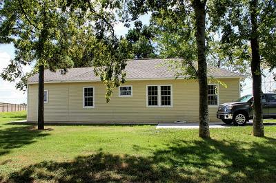 Pearland Single Family Home For Sale: 925 County Road 59