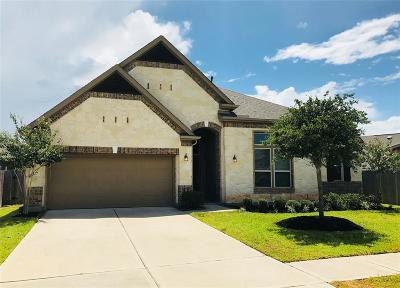 Katy Single Family Home For Sale: 1127 Penny Ranch Lane